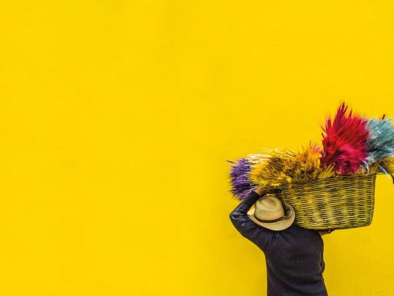 yellow wall, person carrying basket with bright colored grasses