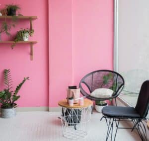 two black chairs set against pink living room wall