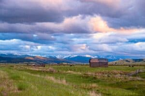 field in montana with barn in background