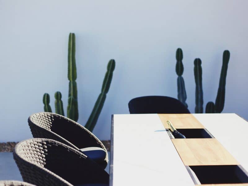 dining set with cactus in the background