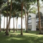 edge of white house surrounded by palm trees
