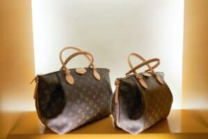 Close up of two Louis Vuitton hand bags